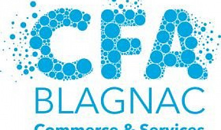 JOB-DATING CFA BLAGNAC
