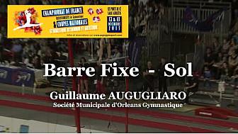 GAM Cheval d'Arçon :Guillaume AUGUGLIARO au Championnat National Séniors de Ponts de Cé @ffgymnastique #TvLocale_fr #coupenat2015