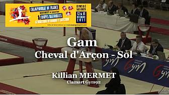 GAM Sol : Killiam MERMET au Championnat National Séniors de Ponts de Cé  @ffgymnastique #TvLocale_fr #coupenat2015