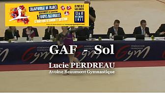 GAF Sol : Lucie PERDREAU au Championnat National Séniors de Ponts de Cé  @ffgymnastique #TvLocale_fr #coupenat2015