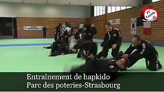 #hapkido, art martial traditionnel coréen, se pratique à Strasbourg