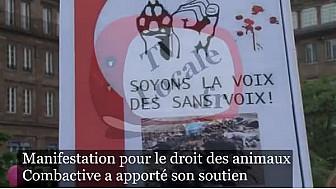 #combactive a apporté son soutien à une manifestation pour le droit des animaux