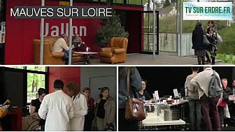 Mauves en Noir : le Festival du polar à Mauves sur Loire @tvsurerdre #festival