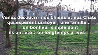 Spa De Montauban Ramier - PORTES OUVERTES DIMANCHE 28 JANVIER - Ils ont besoin de vous !