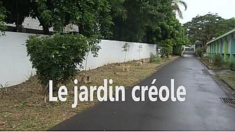 Ateliers Web Reporter CINOR - Je plante, tu plantes, nous protégeons ! – CM2 Ecole Bouvet B - Saint-Denis
