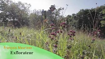 Rétrospective des expositions 2018 de l'Exflorateur François Maurisse avec ses