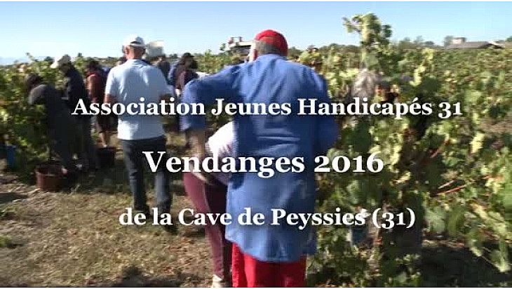 L'Association des Jeunes Handicapés vendange ses vignes à Peyssies (31)  son directeur Didier Gaillard au micro de Michel Lecomte de #TvLocale_fr