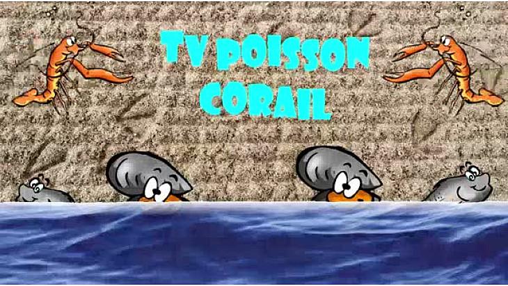 Tv Poisson Corail, la Websérie sur le métier de Poissonnier ... #SCAPP