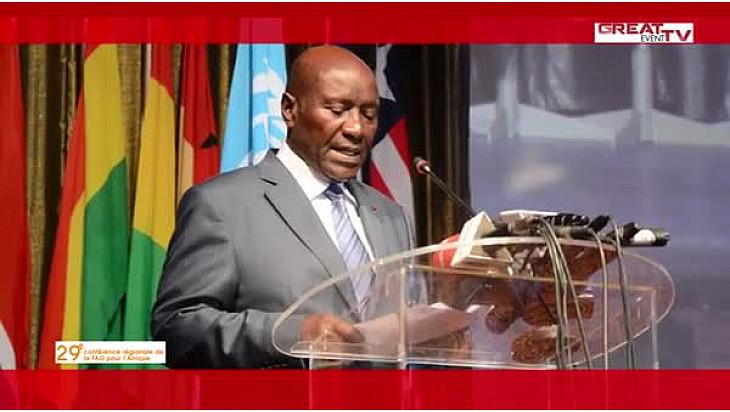 29e Conférence régionale de la FAO pour l'Afrique