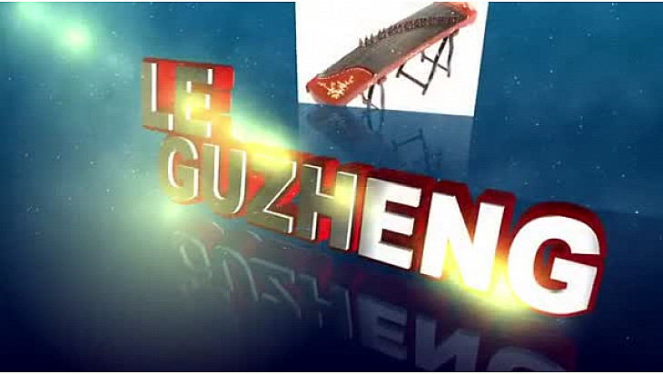 le guzheng instrument musical vietnam #cugnaux  #guzheng #vietnam #TvLocale-fr