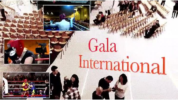Gala d'arts martiaux à St mars du Désert