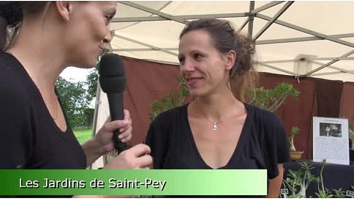 Arièges - Les Jardins de Saint-Pey - Producteurs