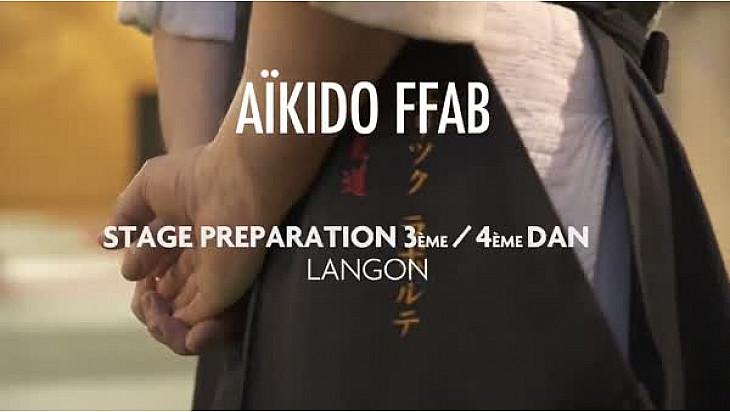 Aïkido:  Stage national préparation 3e et 4e dan Langon (33) FFAB