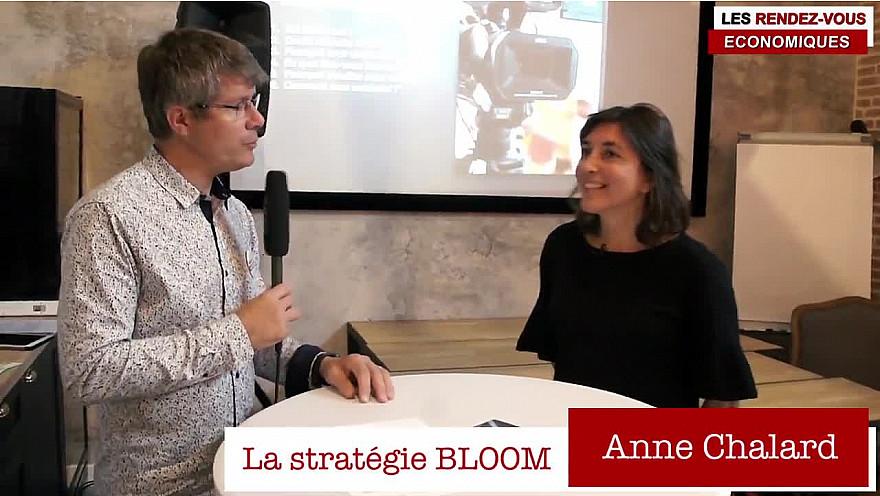 Les Rendez-vous Économiques Smartrezo / assoTvLocale 44 : Anne Chalard #officecoffee #lastrategiebloom #interview