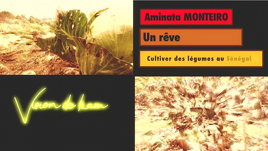 Vision de Kam #culture #sénégal #afrique #tousensemble