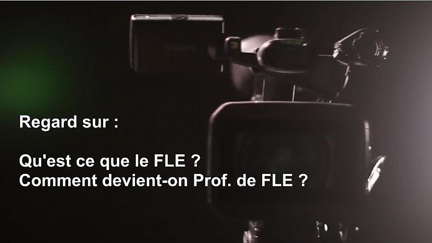 Qu'est-ce que le FLE ? Comment devient-on Prof. de FLE ? #FLE