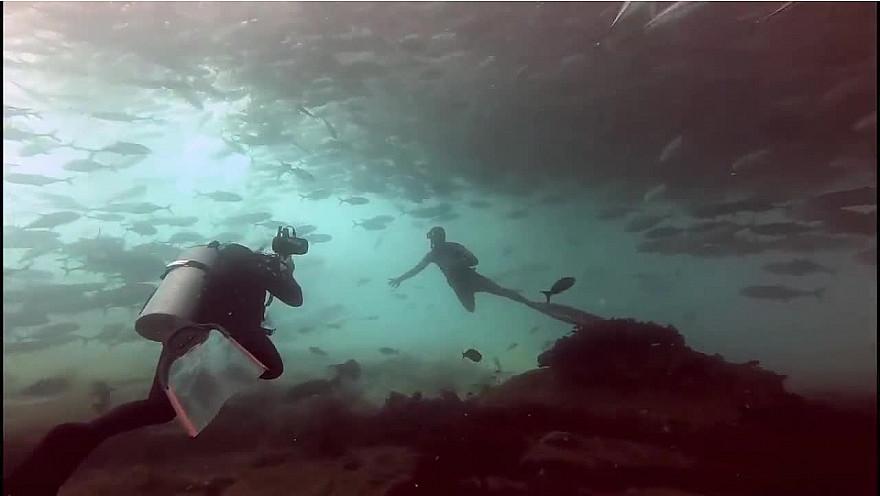 Approche TV  Pierre Frolla, 'Le Coeur de l'Océan' plongée 'Cabo Pulmo' au Mexique @PierreFROLLA @greglecoeur