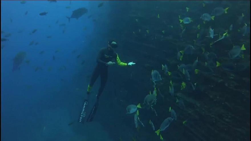 Approche TV  Pierre Frolla, 'Le Coeur de l'Océan' plongée 'Cabo Pierce' et 'The Boiler' au Mexique @PierreFROLLA @greglecoeur