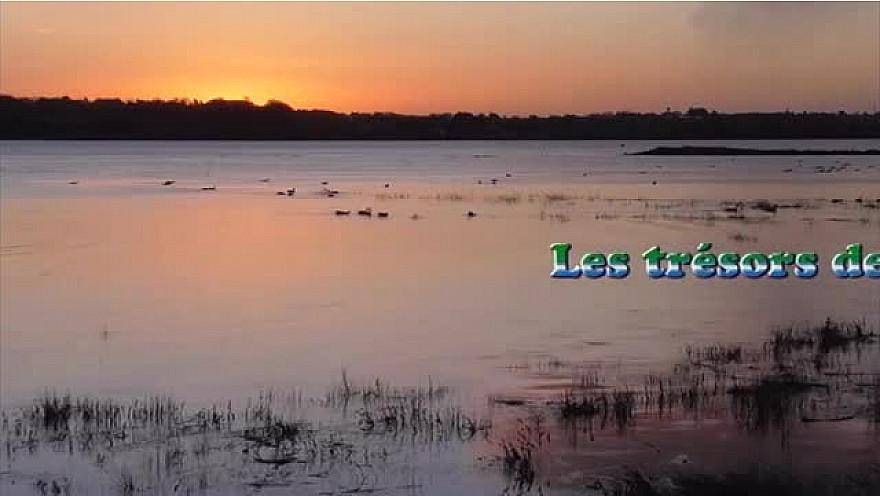 Le Parc Eolien de tous les DANGERS : LES TRESORS DE LA BAIE DE SAINT-BRIEUC EN PERIL