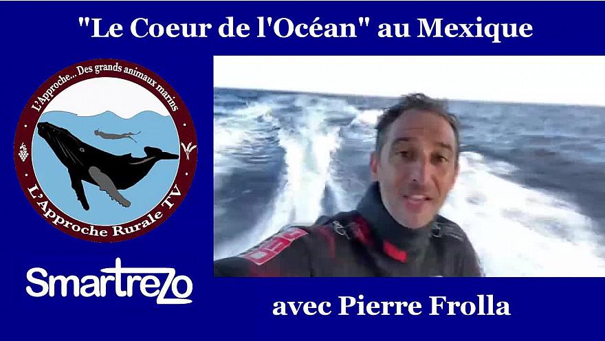Approche TV : 'Le Coeur de l'Océan avec Pierre FROLLA à Roca Partida au Mexique @PierreFROLLA