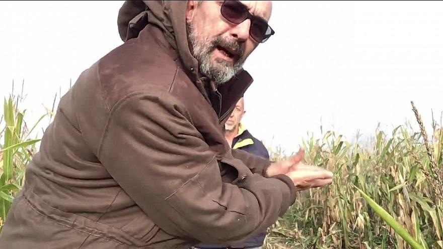 L'Approche... de la Chasse :  Philippe Giry agriculteur et les dégâts causés par la faune dans l'agriculture et les relations avec les chasseurs.