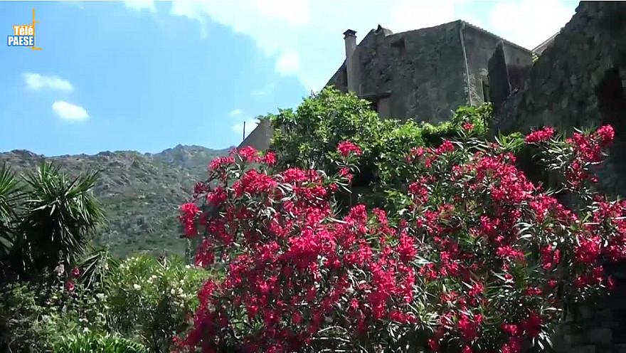 Lama : Évaluation triennale du village fleuri Quatre fleurs @TelePaese