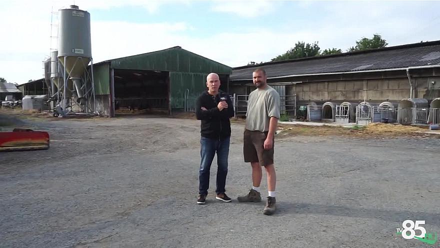 TV85.fr : La production de mogette vendéenne